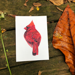 Red Cardinal Bird Watercolor Kat Ryalls