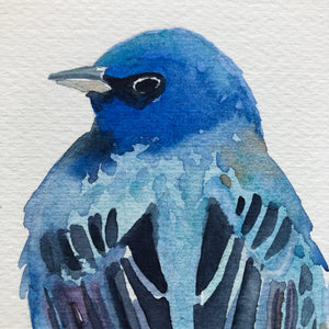Indigo Bunting Bird Watercolor Kat Ryalls