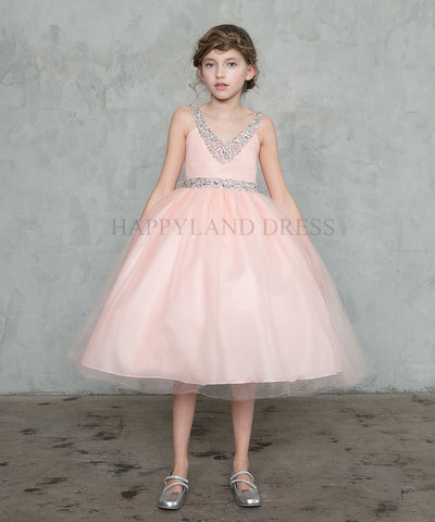 Blush Tea Length Dress