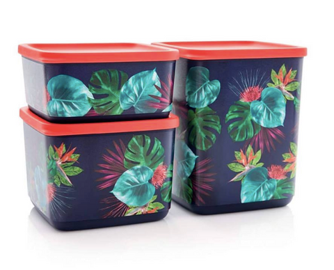 Tupperware Man UK - Cubix Set Mahalo (3)