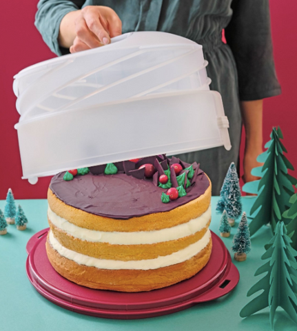 Tupperware Man UK - H03 Collapsible Cake Taker
