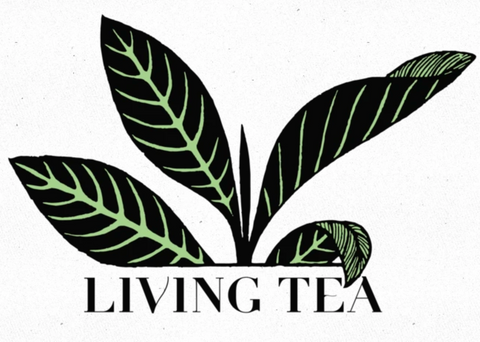 Moonlight White (月光白茶) Living Tea