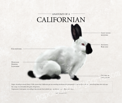 Californian Poster