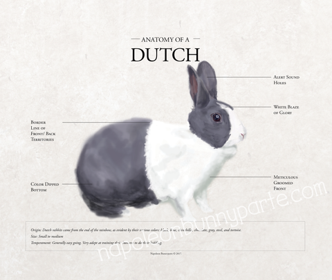 Dutch Canvas Wall Art (16 x 20)