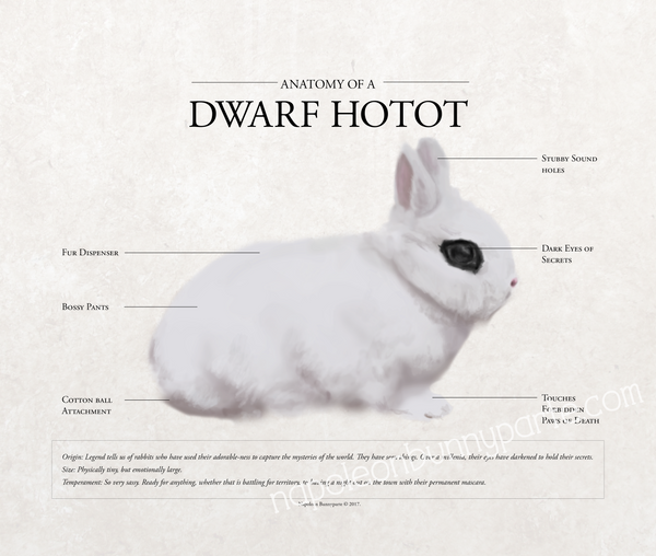 Hotot Canvas Wall Art (16 x 20)