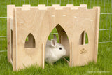 Hoppy Hampton Bunny Castle Bridge
