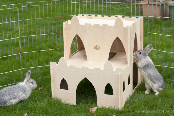 Hoppy Hampton Bunny Castle Keep