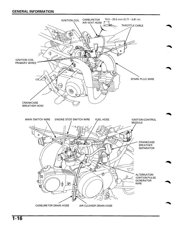 Full Service Manual for Honda Motocross CRF70F Years 2004
