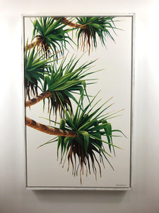Pandanus #1 - Framed Canvas