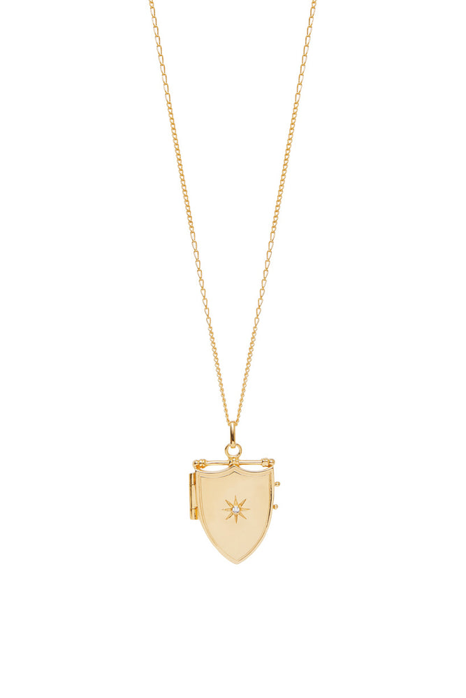 Wild Love Locket Necklace - C