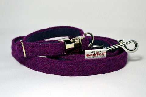 Small Dog/Puppy collars and leads
