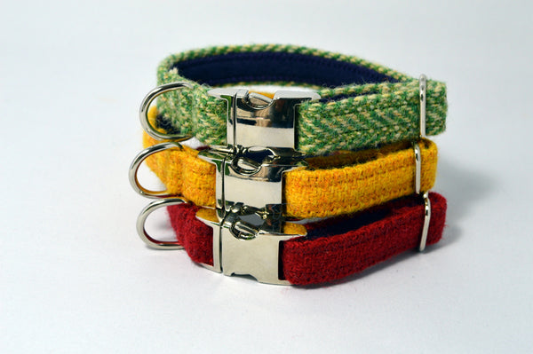Small Dog/Puppy Collar - My McDawg