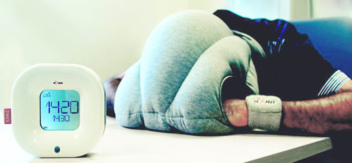 aXbo et OstrichPillow font la sieste