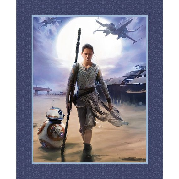 Star Wars Rey & BB8 Fabric Panel