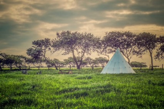 rise-of-glamping-01