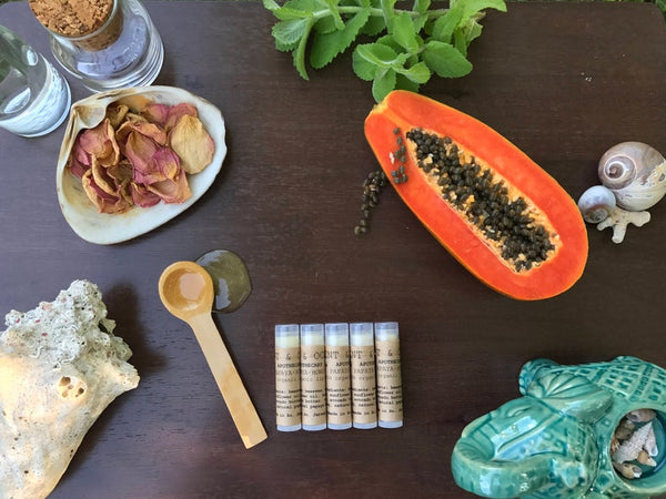 Papaya Honey Organic lip balm by Mint and Ocean