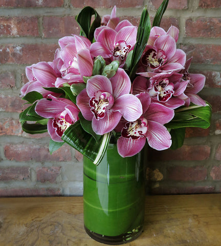 Pink Passionate Orchids