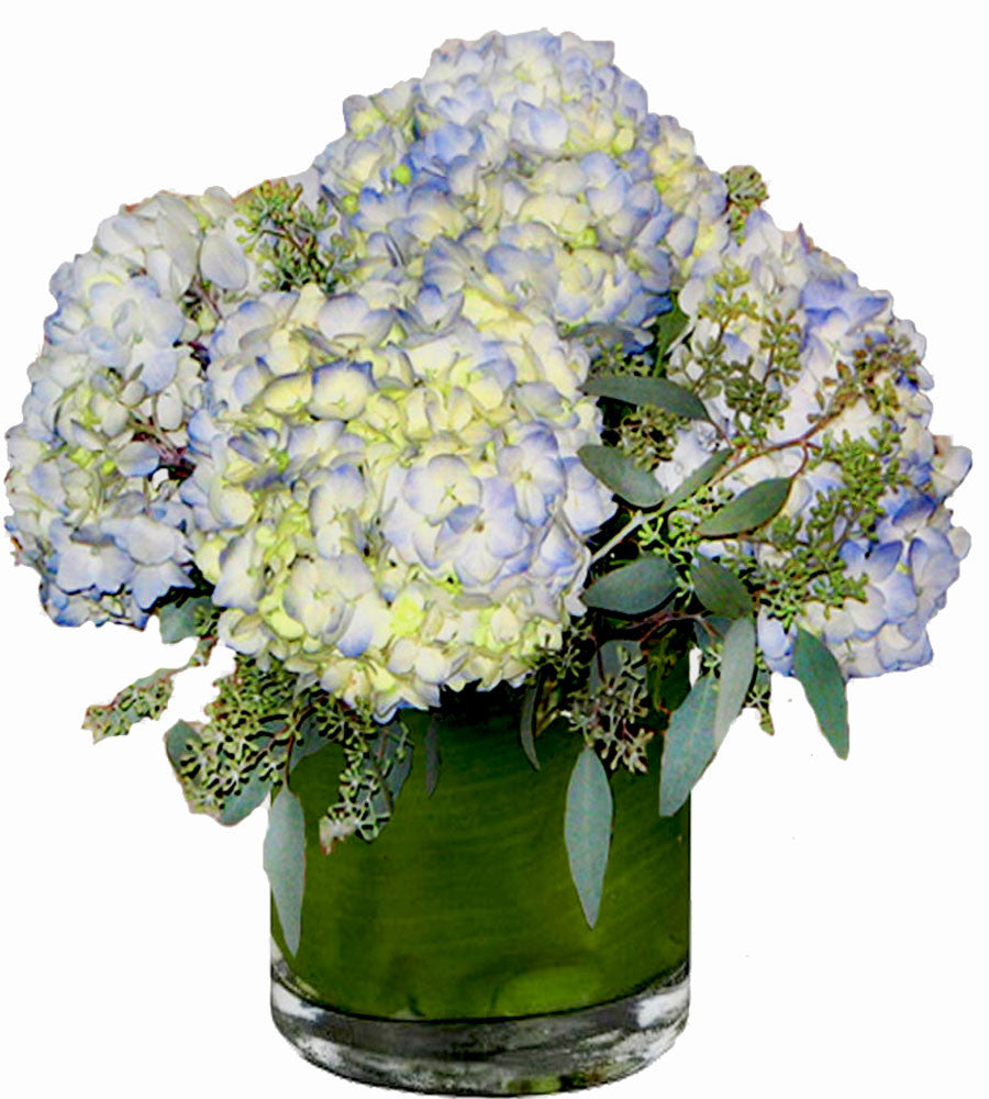 blue hydrangea flower arrangement  georgewood florist, Natural flower