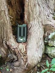 Mighty Vaporizer for sale in Canada