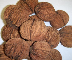 Cracked Whole Black Walnuts