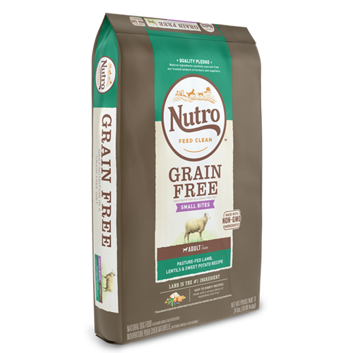 NUTRO GRAIN FREE Lamb, Lentils and Sweet Potato Small Bites Dry Dog Food