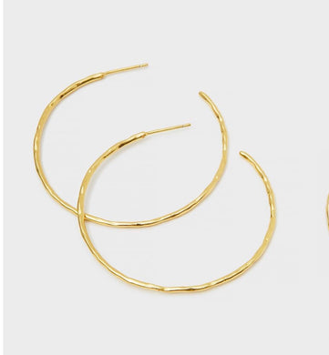 Taner Hoops-Gold