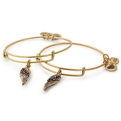 Wings Bangle Set of 2-Gold