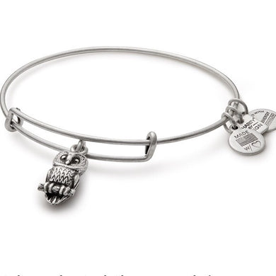 Ode to the Owl Bangle-Silver