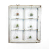 Window Frame Terrarium Wall Garden - 6-pane