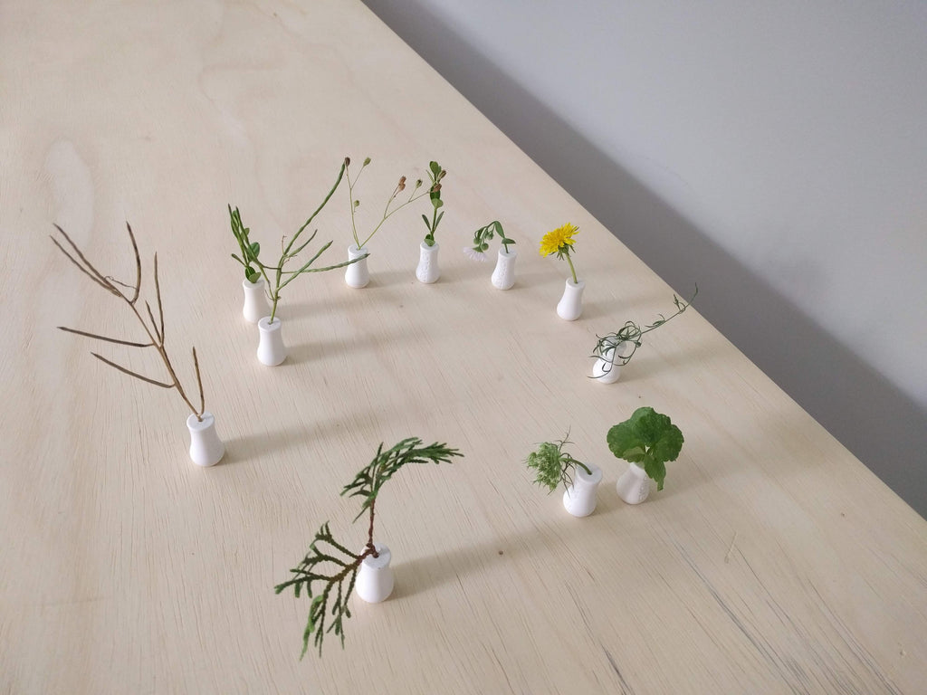 Plant therapy group