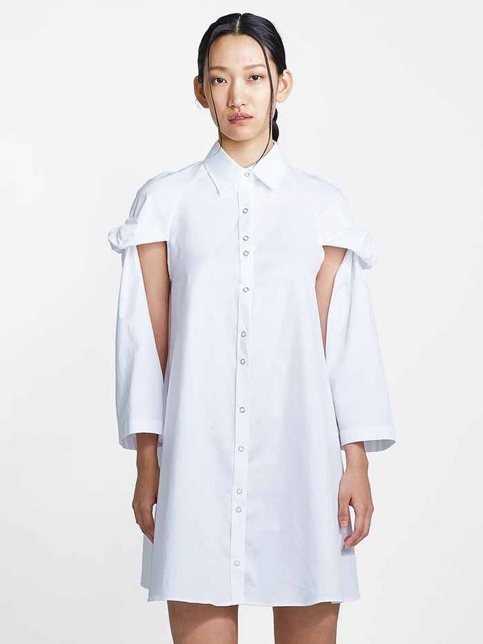 Topsy Turvy Shirtdress