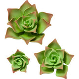 SUCCULENT GREEN GUMPASTE FLOWER - Cake Decorating Supplies | Cake Supplies at Devine Deals