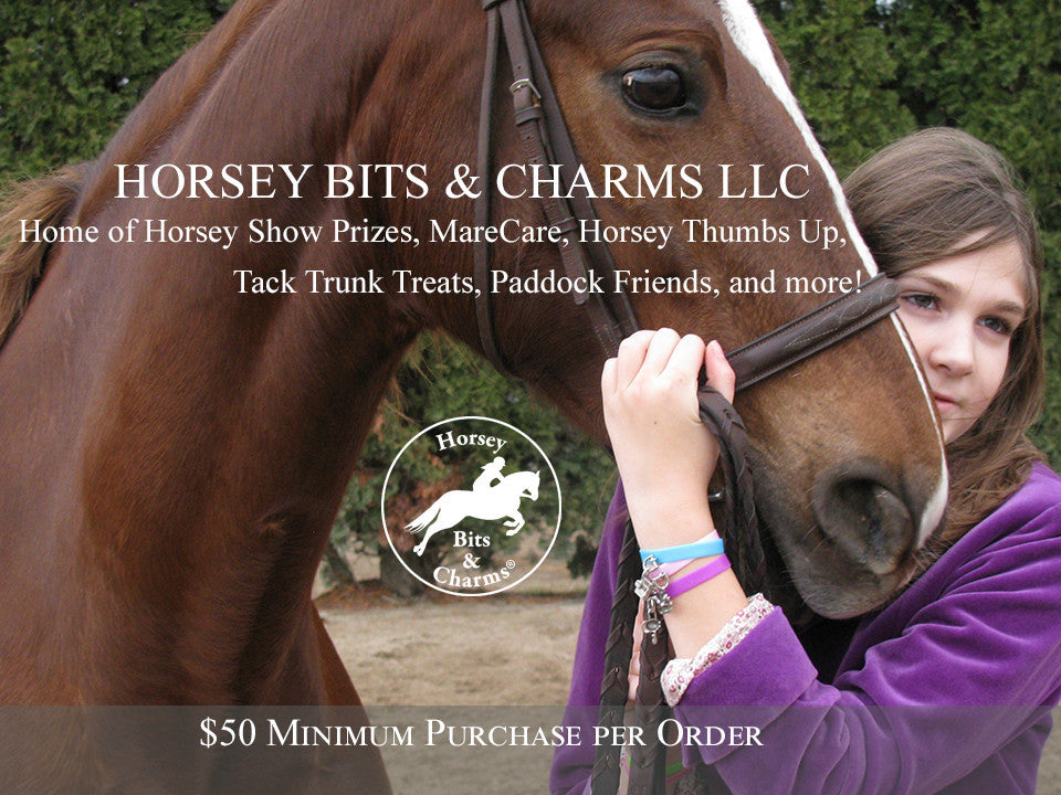 Introducing Horsey Bits & Charms