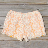 Apricots & Lace Shorts: Alternate View #3