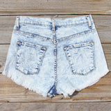 Born Wild Distressed Shorts: Alternate View #3