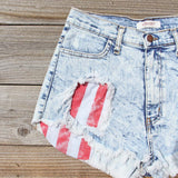 Born Wild Distressed Shorts: Alternate View #2