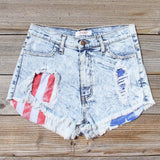 Born Wild Distressed Shorts: Alternate View #1