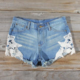 Denim & Lace Shorts: Alternate View #1
