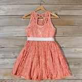 Hickory Hill Lace Dress: Alternate View #4