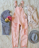 Soft + Destructed Overalls: Alternate View #2