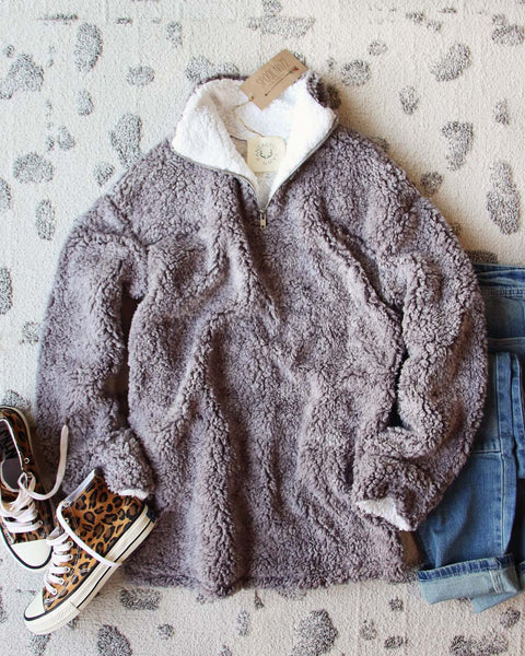 Teddy Cozy Pullover in Gray: Featured Product Image