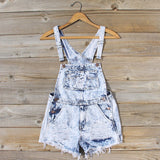 Backroads Distressed Overalls: Alternate View #1