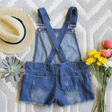 Camper Distressed Overalls: Alternate View #3