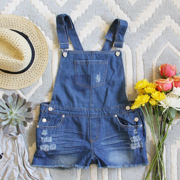 Camper Distressed Overalls: Featured Product Image