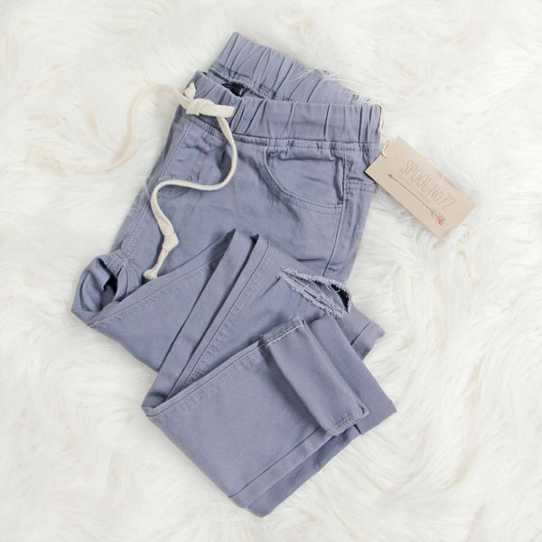 Canyon Sugar Pants in Gray: Featured Product Image