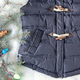 Chalet Cozy Vest in Navy: Alternate View #3