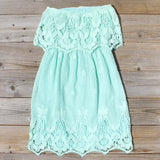 Coyote Lace Dress in Mint: Alternate View #4