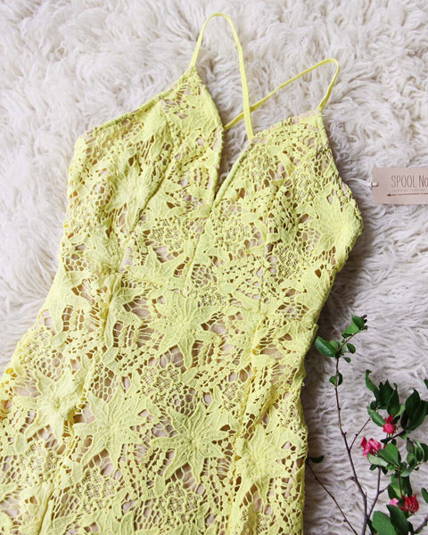 Daffodil Lace Dress: Featured Product Image