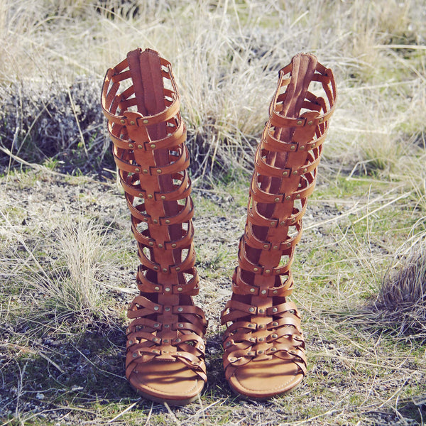 Desert Walker Sandals: Featured Product Image