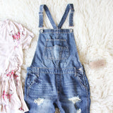 Easy May Overalls Dark Wash: Alternate View #2
